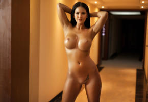 kendra, brunette, boobs, big boobs, naked, nude, hot, sexy, playmate, indoor, big tits, tits, shaved pussy, perfect body, perfect tits, photodromm, cathy, eurotica, hi-q