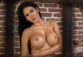 kendra, brunette, boobs, big boobs, naked, nude, hot, sexy, playmate, indoor, big tits, tits, photodromm, cathy, eurotica, hi-q, close up, super boobs