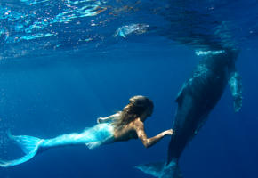 cosplay, mermaid, swimming, whale, underwater