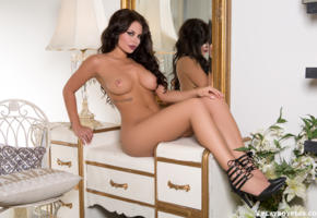 shelly lee, brunette, sexy girl, nude, naked, legs, heels, boobs, nipples, tattoo, mirror, flowers, lamp, tanned, tits