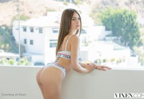riley reid, brunette, long hair, tattoo, lingerie, ass