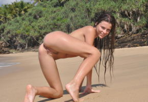 alexa, brunette, beach, wet, naked, trimmed pussy, labia, ass, smile, hi-q
