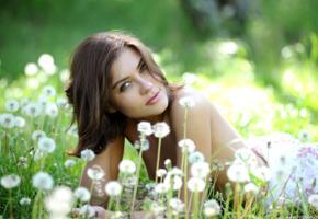 mari d, sabine, beautiful, brunette, sexy, topless, outdoor, dandelion