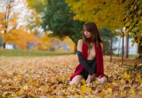brunette, outdoor, autumn, leaf, park, ariel rebel