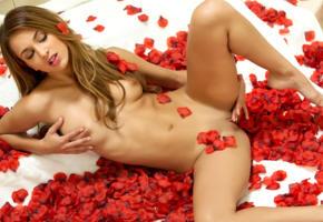 dream babe, brunette, masturbation, french style nails, petals, rose petals, belicia, belicia segura, luna, madeline clark, uma jolie, tits, tanned, shaved pussy