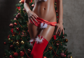 christmas, girl, stocking, panties, tanned, christmas tree, red stockings