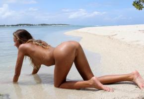 tanned, doggy, butt, ass, pussy, labia, sand, beach, smooth pussy, x-art, clover, island passion, katya clover, mango a, wet, tropics, nude, caramel, eavalla, katya, katyaclover