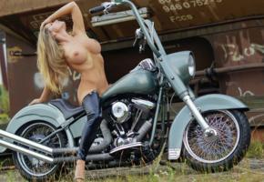 model, blonde, motorcycle, harley davidson, naked, leggings, big tits, nipples, boobs