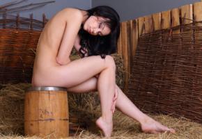 sheri vi, joanna, darina, karina, genie, divina, model, russian, nude, barrel, hay