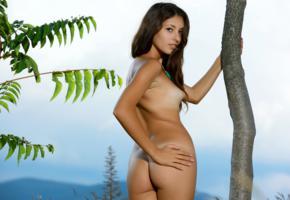 hailey, diana i, rosella, verona, brunette, outdoors, tree, naked, tanlines, small tits, puffy nipples, ass, hi-q