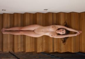brunette, stairs, smooth pussy, shaved pussy, lying, perfect body, connie carter