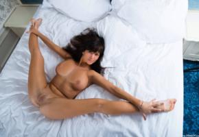 black haired, boobs, smile, tanned, spreading legs, shaved pussy, big tits, bed, flexible