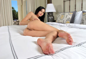 ariana marie, model, pretty, babe, dark hair, sensual lips, pussy, shaved pussy, labia, anus, bum, ass, legs, graceful feet, bed, bedroom, nude