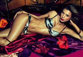 elisabetta canalis, brunette, italian, actress, model, hot, lingerie, red lips