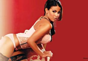 sharokina hasso, exotic, american, glamour, model, tv host, erotic, lingerie, corset, stockings, own cut, widescreen cut