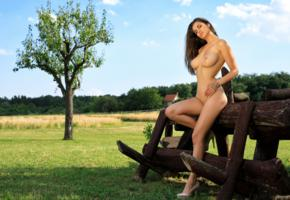 amazing, nude, field, tits, big breasts, nature, outdoor, tree, gorgeous, boobs, big tits, faith, tanned