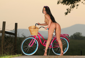 barbara desiree, ass, brunette, fence, model, pussy, outdoors, nude, long hair, tanned