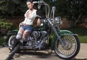 darcy diamond, brunette, non nude, harley davidson, motorcycle, shorts, cleavage, boobs, tattoos, leather, boots, hi-q, denim shorts