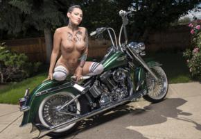 darcy diamond, brunette, harley davidson, motorcycle, naked, big tits, nipples, shaved pussy, tattoos, knee socks, hi-q, tattoo