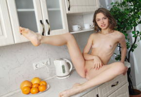 clarice a, clarice, elvira, tits, smile, shaved, pussy, nude, brunette, small tits, shaved pussy, labia, spreading legs, kitchen