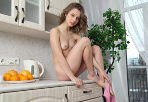 clarice a, clarice, elvira, nude, brunette, small tits, tits, kitchen