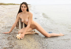 lola c, long hair, brunette, nude, sea, beach, outdoors, shaved, wet, shaved pussy, pussy, boobs, tits, tanned, lola cherie
