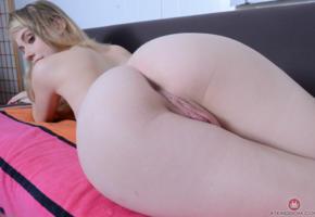 hannah hays, blonde, ass, pussy, anus, labia, big ass, hot, ass wallpaper
