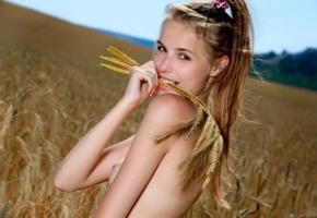 elle tan, elle, model, brunette, smile, sweet, tits, wheat, field, portrait