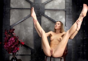 karissa diamond, dana p, delicia, karissa, katie a, model, pretty, blonde, closed eyes, legs up, tip toes, tits, pussy, shaved pussy, labia, anus, flowers, chair, nude