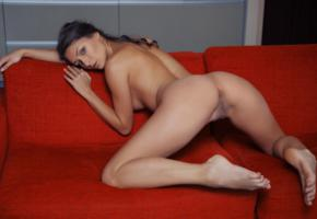 pussy, couch, beauty, yarina a, ass, labia, nude, doggy, legs