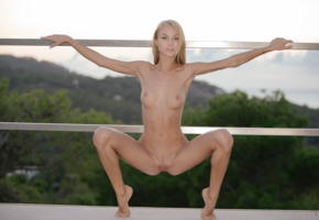 nancy ace, nancy a, jane f, erica, blonde, outdoors, fence, naked, squatting, boobs, tits, nipples, landing strip, pussy, labia, spread legs, hi-q