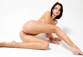 lilit a, ariela, rufina t, ariel a, laela ryiah, natasha udovenko, natellaq, pretty, dark hair, sensual lips, pussy, shaved pussy, labia, anus, ass, legs, tattoo, soft focus, nude
