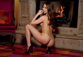 riley reid, ass, fireplace, smile, tattoo, back, nude, high heels, brunette