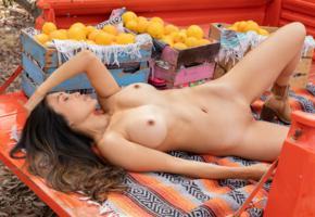 viviane lane, brunette, truck, naked, boobs, big tits, nipples, shaved pussy, spread legs, oranges, hi-q