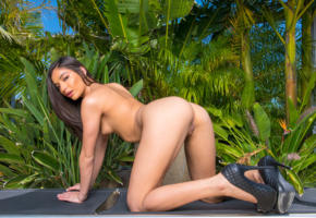emily willis, brunette, outdoors, bench, naked, boobs, tits, nipples, shaved pussy, labia, ass, doggy, high heels, hi-q