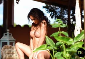 adele taylor, brunette, big boobs, fake boobs, boobs, big tits, nipples, tanned, nude