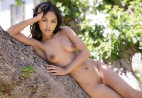 chloe rose, playboy, shaved pussy, tits, boobs, nipples, brunette