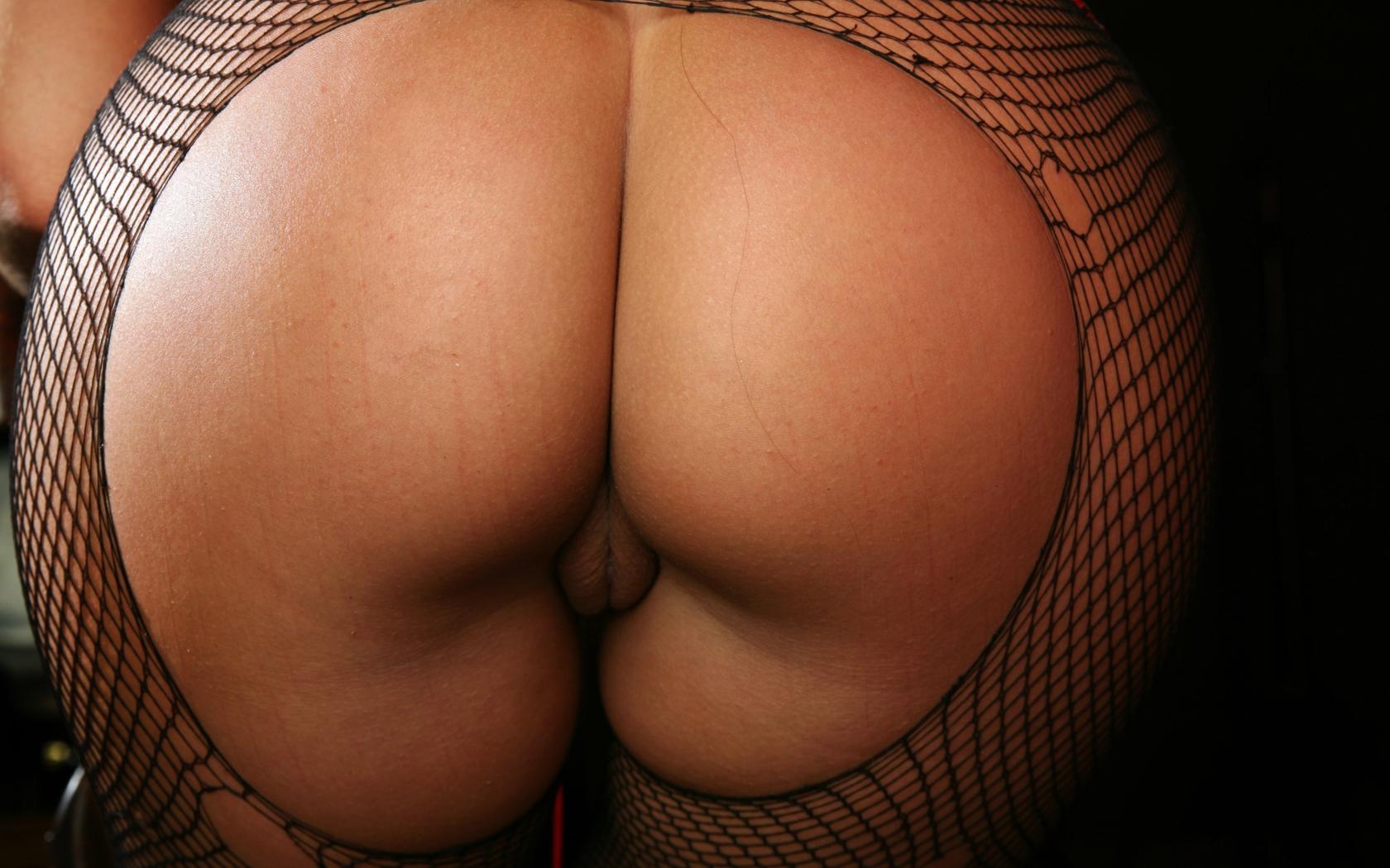 Amazing Big Pussy download photo 1680x1050, sylvia, model, amazing, big ass